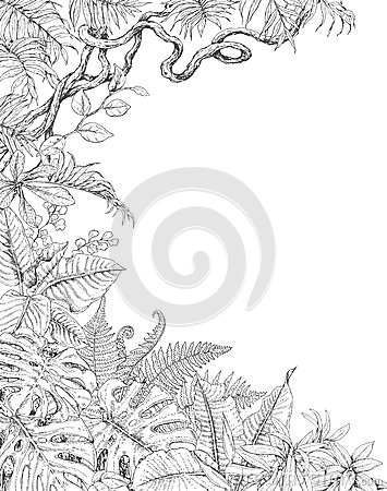 One Sided Background with Tropical Plants Vector Illustration