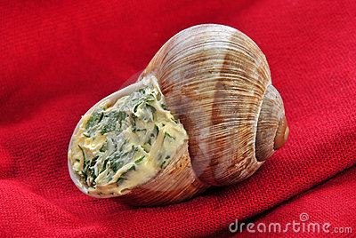 One snail with a delicious herb buttercream