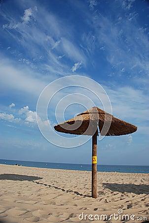 One straw hat