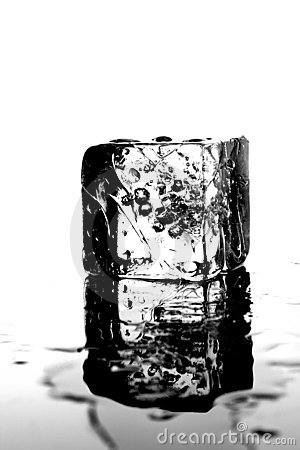 One Wet Ice Cube
