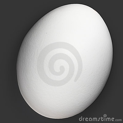 One White Organic Egg Isolated On Black