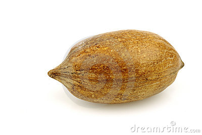 One whole pecan nut