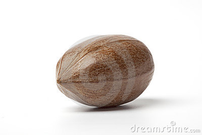 One whole single pecan nut