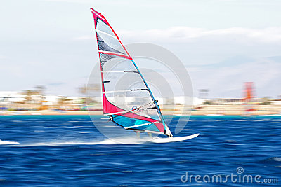 One windsurfers in motion