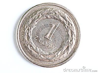 One Zloty coin macro