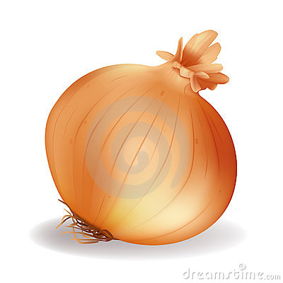 Free Onion Stock Photos - 13308603