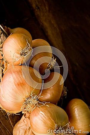 Onion braid