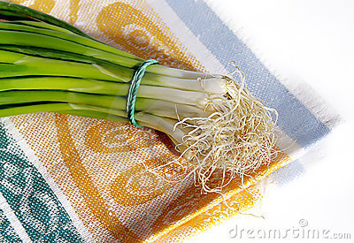 Onion on cotton napkin
