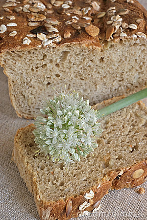 Onion flower on the slice of oniony bread