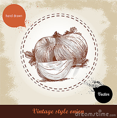 Free Onion Hand Drawn Illustration. Vintage Retro Background With Hand Drawn Sketch Onions. Stock Photos - 67829653