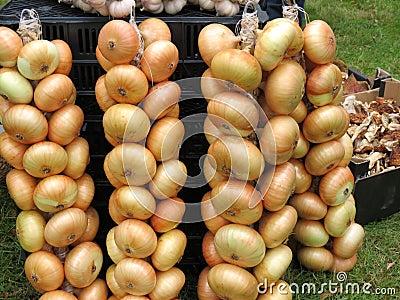 Onion string