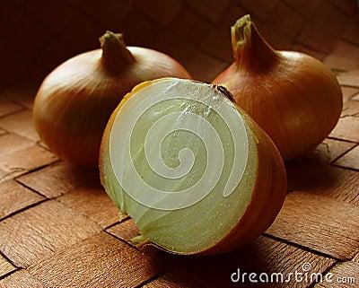 Onion study 2
