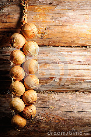 Onion on Wooden Wall with Copy Space