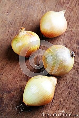 Onions, still life.
