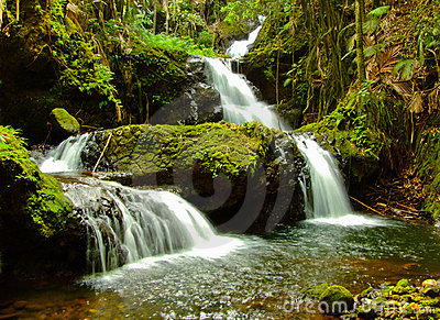 Onomea Falls, Big Island Hawaii Stock Photos - Image: 20497693