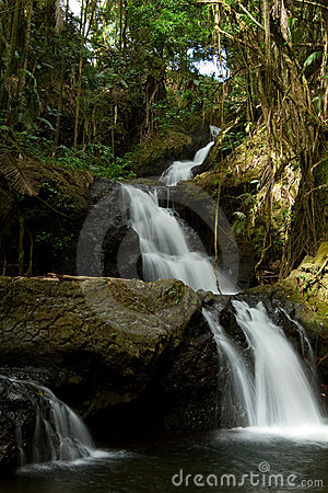 Onomea Falls lo