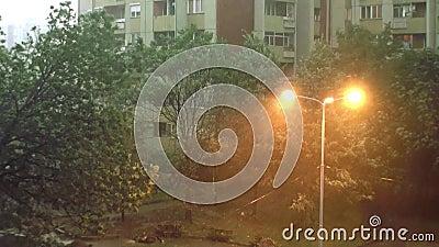 Onweer en Heavy Rain 2 - Zware regen en zeer sterk onweer De bomen bewegen zich net sterk links en stock footage
