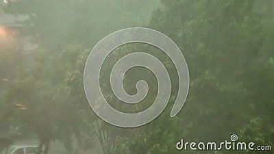Onweer en zware regen stock footage