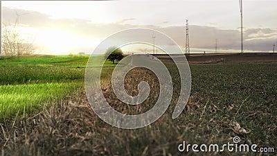Onwerkelijk landschap stock videobeelden