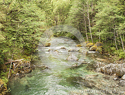 Opal Creek Oregon Hiking