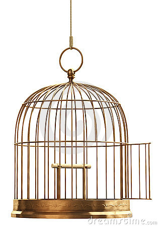 Open Bird Cage Royalty Free Stock Photos - Image: 5123568