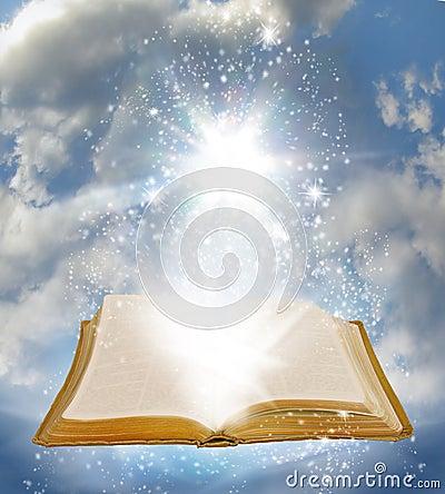 Free Open Book Royalty Free Stock Photos - 8849628