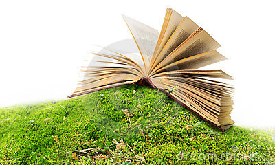 open book on moss/ ground
