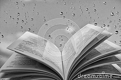 Open book near  window