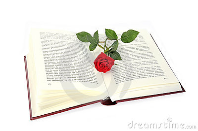 Open book and rose.