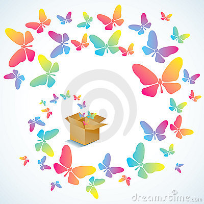 Open box and the butterfly