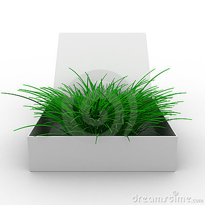 Open box with grass