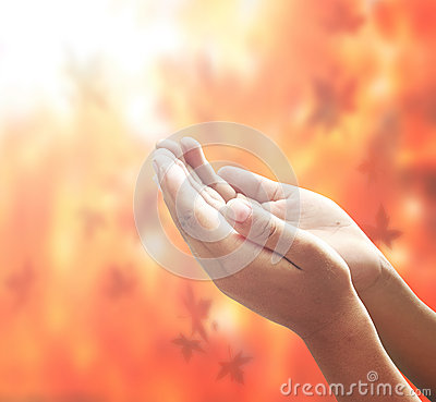 Free Open Empty Hands Royalty Free Stock Image - 47635406