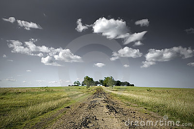 Open Field and a Dirt Road