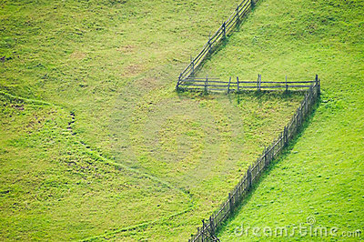 Open grass fields
