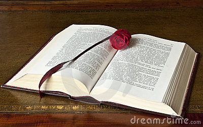 Open old book with rose