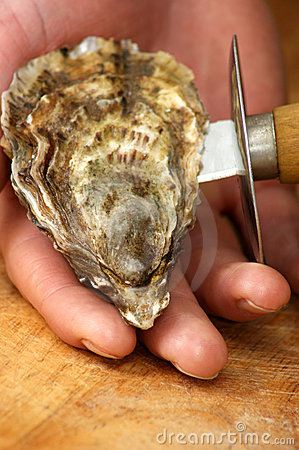 open one raw organic oyster