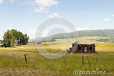 Open Range Land