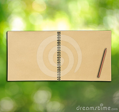 Open vintage sketch book on green background