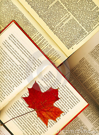 Opened books and maple leaves