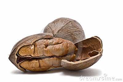 An opened nut and a whole one.