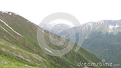 Opini?o c?nico do ver?o das montanhas Campo de flores da grama e da montanha Paisagem do cume das montanhas de Altai video estoque