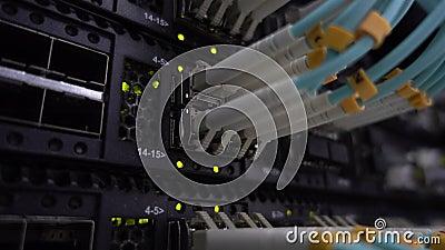 Opinião lateral de cabos óticos da fibra Conceito do servidor da tecnologia filme