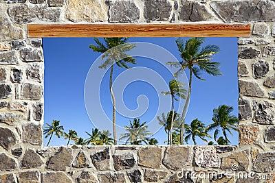 Opinión tropical de las palmeras de la ventana de la pared de albañilería de piedra