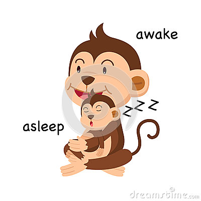 Free Opposite Words Asleep And Awake Vector Stock Photos - 92084713