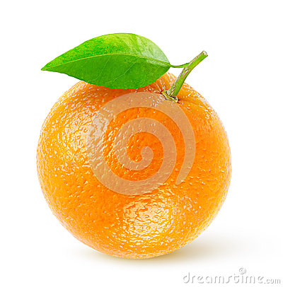 Free Orange Stock Images - 42424404