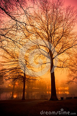 Free Orange And Pink Sunset Over Foggy Pond With Trees Royalty Free Stock Images - 130413889