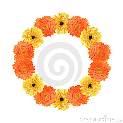 Free Orange And Yellow Daisy Circle Frame Stock Photo - 20876760