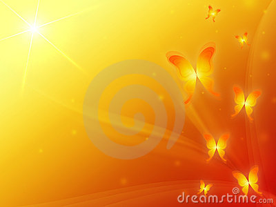 Orange background with butterflys