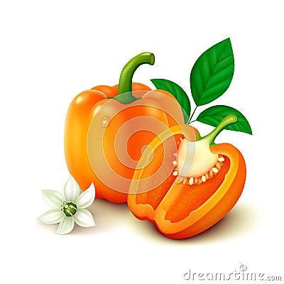 Free Orange Bell Pepper (bulgarian Pepper)  On White Background Stock Photo - 48417980