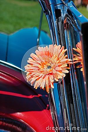 Orange cloth flower